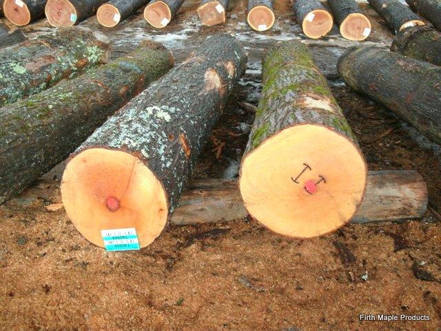hard maple baseball bat logs